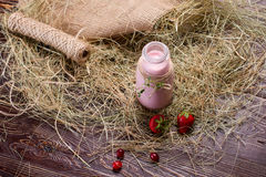 Strawberry ice cream milkshake. Stock Images