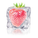Strawberry in an ice cube Stock Image