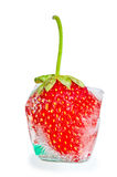 With strawberry ice cube Stock Images