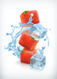 Strawberry, ice cubes and a splash of water vector illustration
