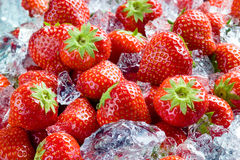 Strawberry with ice Stock Image