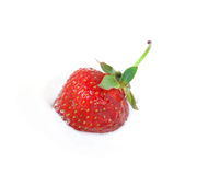 Strawberry in icecream Royalty Free Stock Image