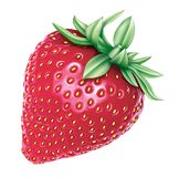 Strawberry illustation by NB. Large size Strawberry product illustrations royalty free illustration