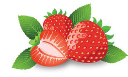 Strawberry, illustration Stock Photography