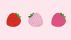 Strawberry illustration. Strawberries in three colors - red, pale pink and hot pink Stock Photography