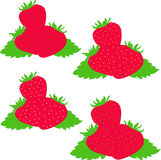 Strawberry  illustration Stock Photography