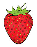 Strawberry illustration Stock Image