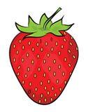 Strawberry illustration Stock Image