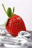 Strawberry Imaginations Royalty Free Stock Image