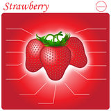 Strawberry Infogram Stock Photos