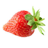 Strawberry isolated Stock Image