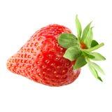 Strawberry isolated stock image