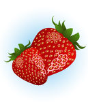 Strawberry_on_isolated_background Stock Images