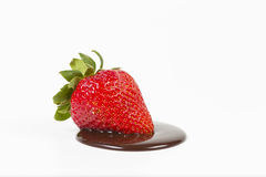 Strawberry isolated in a chocolate pool Stock Images