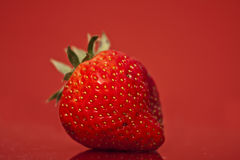 Strawberry Isolated on Red Background Royalty Free Stock Photography
