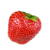 Strawberry isolated on white. Single strawberry isolated on white background Royalty Free Stock Photography