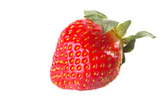 A strawberry isolated in white background. Iwith copy space Royalty Free Stock Photography