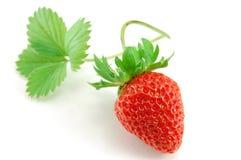 Strawberry isolated on white background Stock Photos