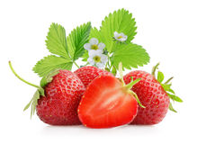 Strawberry isolated on a white Stock Images