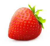 Strawberry isolated Royalty Free Stock Photo