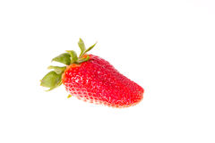 Strawberry isolated Royalty Free Stock Photography