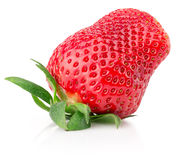 Strawberry isolated on the white background Stock Photography