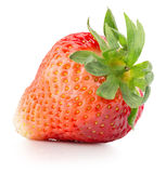Strawberry isolated on a white background.  Royalty Free Stock Image
