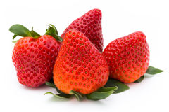 Strawberry isolated on white background. Fresh berry. Strawberry isolated on white background Fresh berry Stock Image