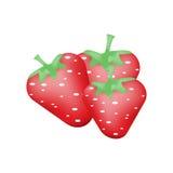 Strawberry isolated on white background. Stock Image