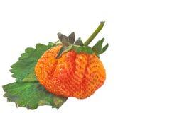 Strawberry Isolated On White Royalty Free Stock Photos