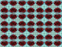 Strawberry kaleidoscope Stock Photo