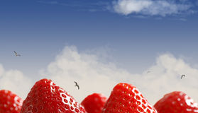 Strawberry Landscape. Photo composite depicting strawberry hills royalty free stock images