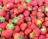Strawberry. A large number of strawberry on a horizontal photo Royalty Free Stock Photography