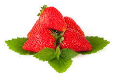 Strawberry on leaf Stock Image
