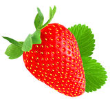 Strawberry with leaf isolated on white Stock Photos