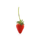 Strawberry with leaf on white Royalty Free Stock Photos