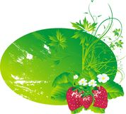 Strawberry with leaves Stock Photo