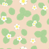 Strawberry leaves and flowers vector seamless pattern. Strawberry leaves and flowers vector pattern Royalty Free Stock Photo