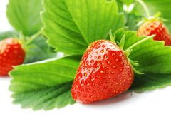 Strawberry with leaves Stock Photography