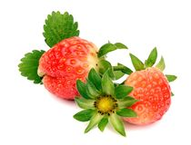Strawberry with leaves. Isolated on white. Ripe strawberry with leaves isolated on a white stock photos