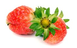 Strawberry with leaves. Isolated on white. Ripe strawberry with leaves isolated on a white royalty free stock images