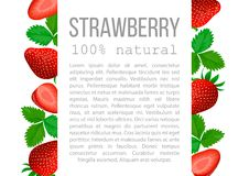 Strawberry with leaves poster with description text Royalty Free Stock Images