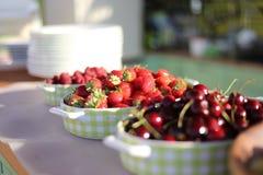 Strawberry life stock photo