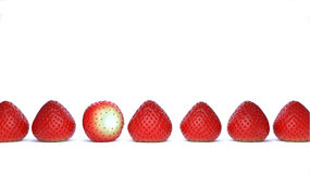 Strawberry Lineup Stock Photography