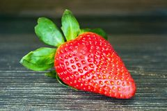 Strawberry. Stock Photos