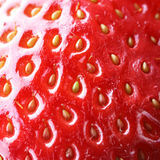 Strawberry macro Royalty Free Stock Image