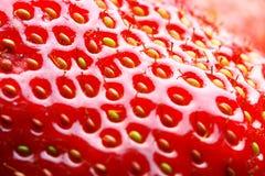 Strawberry macro. May be used as background. Shallow DOF Stock Photo