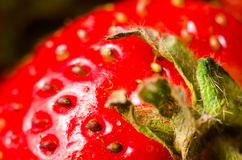 Strawberry macro. As a background Royalty Free Stock Photography