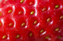 Strawberry macro Royalty Free Stock Images