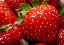 Strawberry. Macro image of some strawberries Royalty Free Stock Images